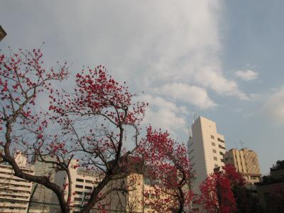 Maerz 2007 Shinagawa