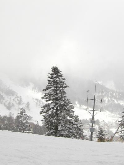 雪山@万座温泉スキー場