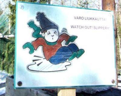 あひるんるん♪ (フィンランド2007 その3)