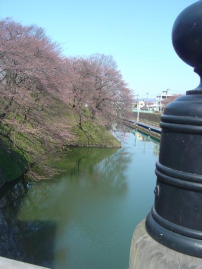 「桜の山形」の旅