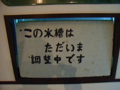 10年ぶり・・・「じいちゃんの島」大島へ