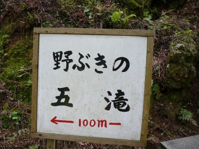 京丹波町散策:野ぶきの五滝