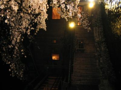 桜~京都? 祇園~