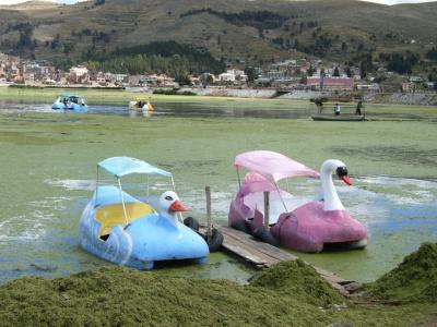 【南米4週間】ふらふらチチカカ湖