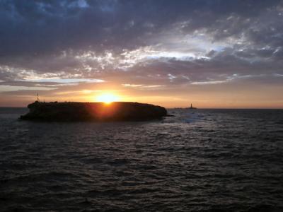 紅海 2週間ダイビングクルーズ