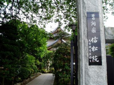 2007年5月 八王子信松院(武田信玄公四女松姫開基)