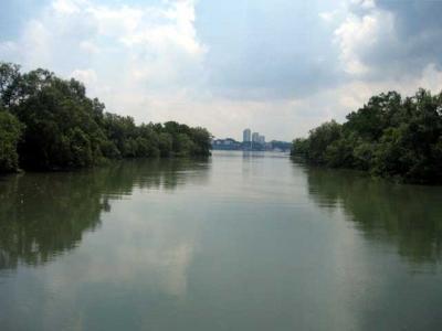 スンゲイ・ブロウ自然公園 Sungei Buloh Wetland Reserve ~シンガポールで再び暮らす【1】~