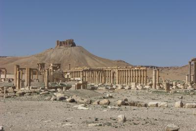 2007年イギリス・エジプト・ヨルダン・シリア旅行 23日目前編 パルミラ -PALMYRA-