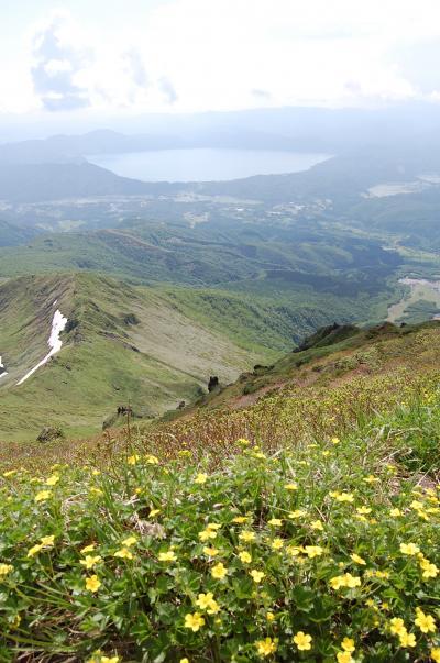 花咲く「秋田駒ヶ岳」ハイキング(1)