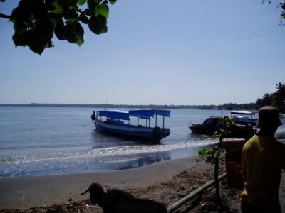 コモド島、ロンボク島ギリでダイビングーーーその6