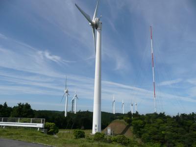 風車を見にドライブしてきました。