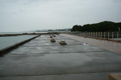 和歌山海釣り紀行