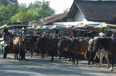 庶民の足 チドモ  ロンボク島