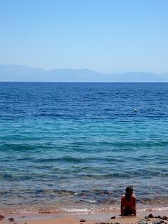 海の中を覗いてみれば@ダハブ