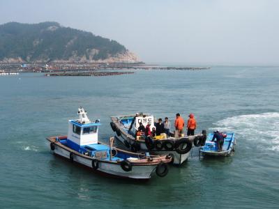 2006春、韓国紀行15(5):4月28日(1)紅島・木浦から紅島へ、紅島の宿探し