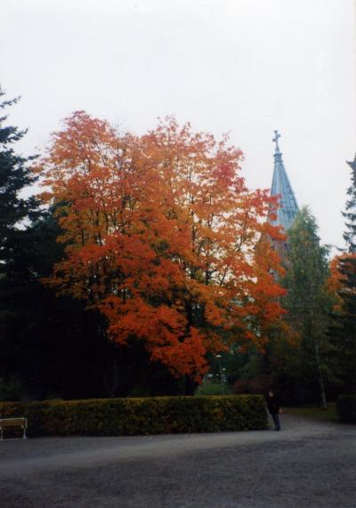 1999年秋旅行2 ユバスキュラ(Jyvaskyla)
