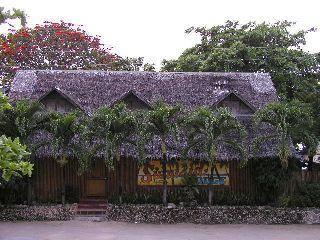フィリピン#2<セブ島・モアルボアル#1−2>