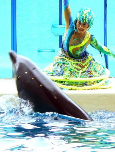 5.新江ノ島水族館 前編 イルカの言葉が分かるアクアンによるショー