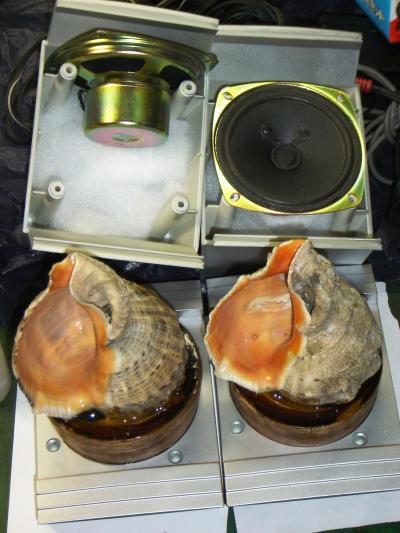 ニシ貝のスピーカー製作記