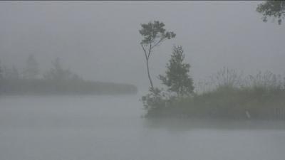 【動画あり】 初秋 霧の白樺湖