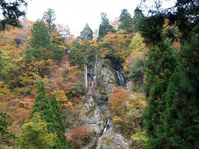 滝めぐりシリーズ39 宍粟市の滝と紅葉