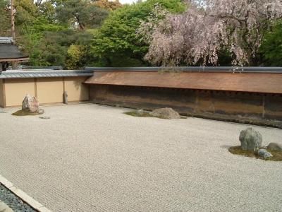龍安寺:遅めの桜と枯山水