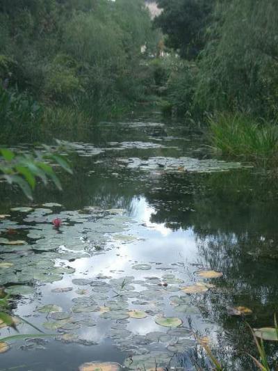 「地中の庭」はモネの小世界