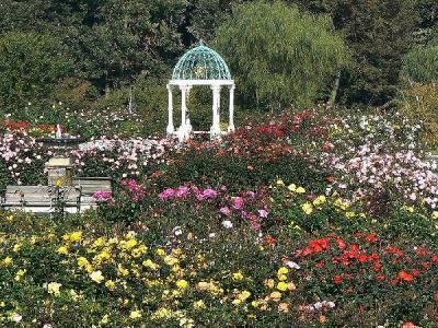 K'sei Rose Garden