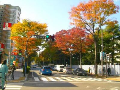 武蔵小杉 都会の中の紅葉