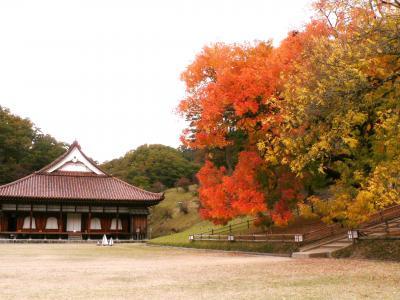 閑谷学校・楷の木の紅葉