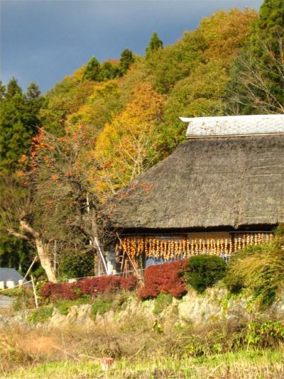 秋を満喫!北茨城ドライブ・前半