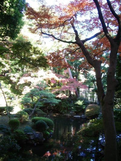 今年の秋は東京を満喫してみよう【第6弾:国分寺・小金井・吉祥寺】