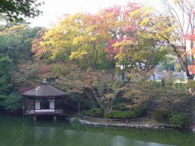 紅葉が始まりだした、和歌山城