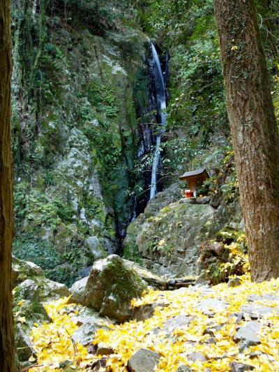 滝めぐりシリーズ41 兵庫県宍粟市の滝の紅葉はスカでした