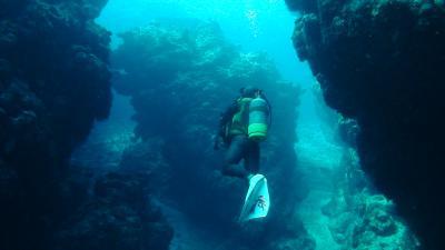 ダイビング 久米島 3日目
