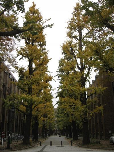 晩秋の本郷・上野界隈【東大から上野へ】