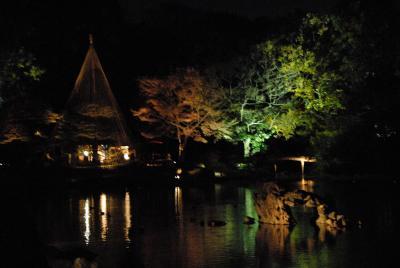 駒込 六義園 紅葉のライトアップ