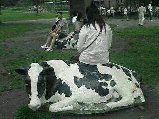 2006.08.14-08.15 岩手・雫石