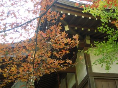 紅葉求めて川越散策その2:三芳野神社と御嶽神社で紅葉狩り