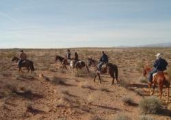 NFR(ナショナルファイナル・ロデオ)/乗馬ツアー