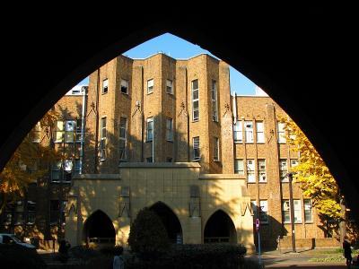 黄葉 東京大学弥生キャンパス