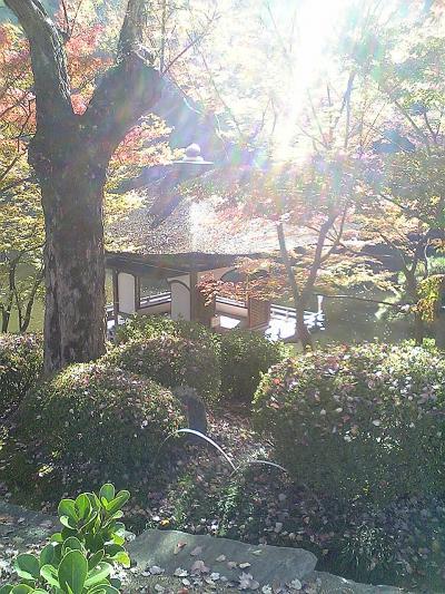和歌山 2007 秋 ~吉宗の故郷を訪ねる