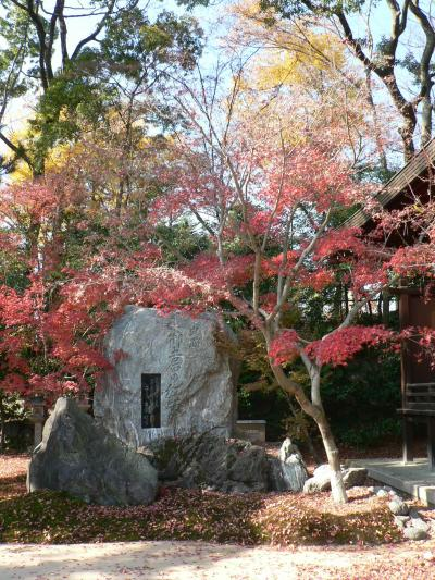 日本の旅 関西を歩く 京都、北野天満宮と紅葉