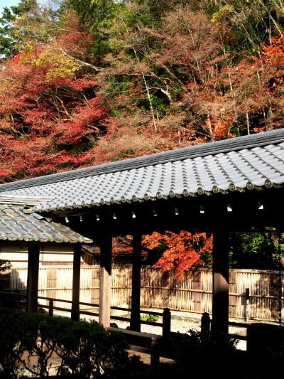 京都紅朱-5 南禅寺方丈庭園の風情 ☆水路閣に紅葉映えて