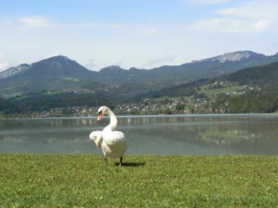 ~ザルツカンマーグートをドライブ~ 07 ドイツ、オーストリア、スロベニア☆世界遺産と温泉でまったり