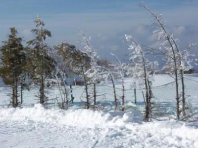 08'1月スキー~今シーズンの滑り始め