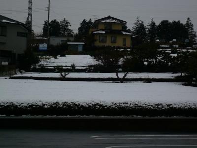 ~初雪&積雪~