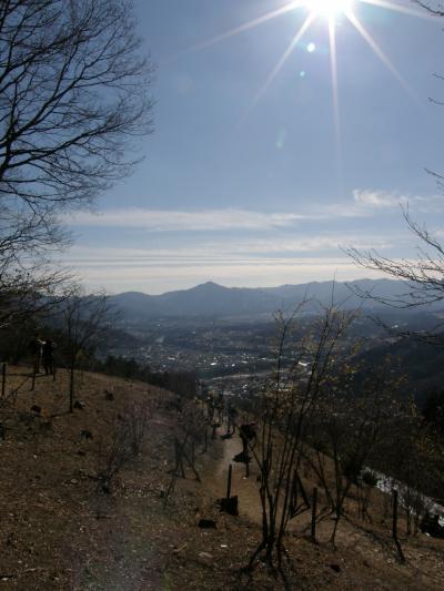 長瀞宝登山と長瀞アルプスを歩く・・・  2  宝登山から長瀞アルプスを歩く