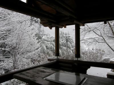 思わぬ雪景色の旅に・・・あじさい館
