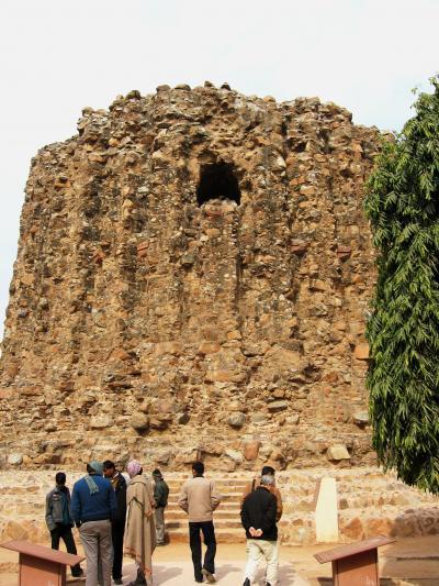 2008冬、インド旅行記(22):1月28日(4)クトゥブ・ミナール複合建築群